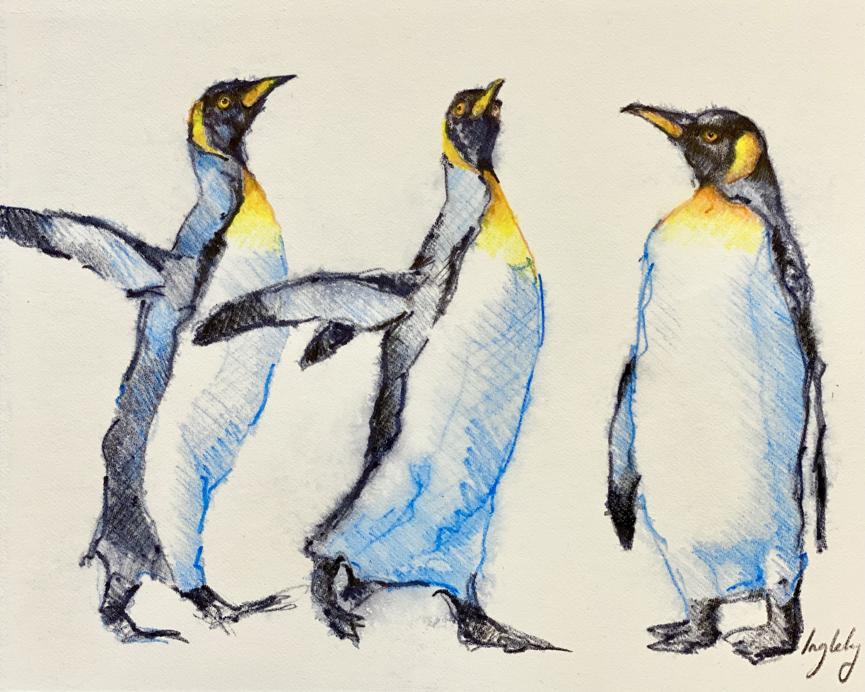 penguin christmas sketch