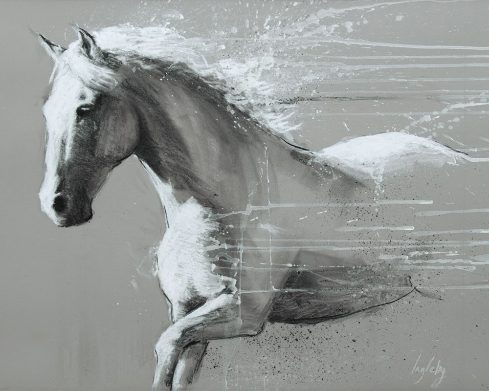 monochrome drawing of a grey white horse
