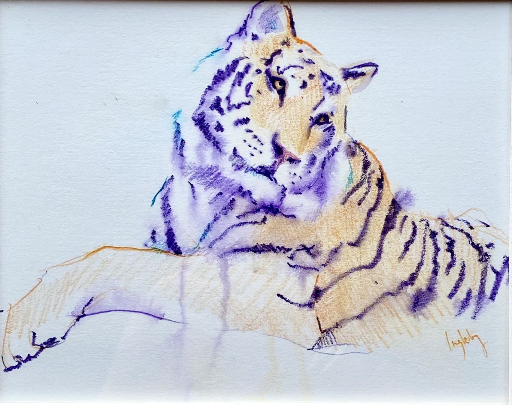 tiger drawing, sketch, christmas, unique