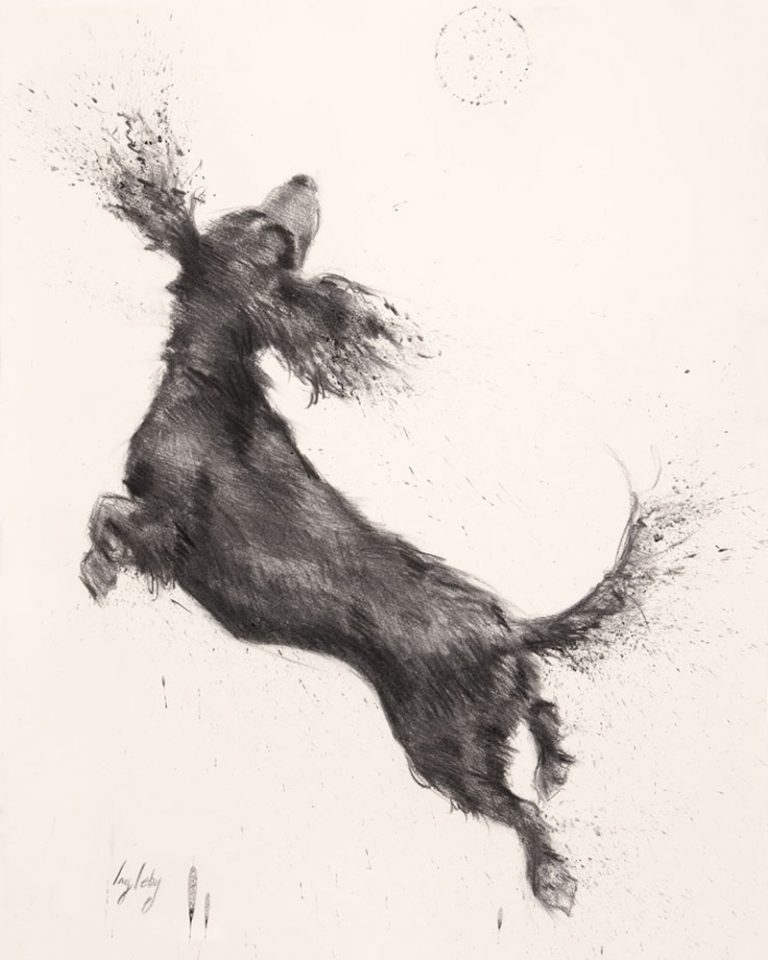 art print contemporary drawing charcoal cocker spaniel