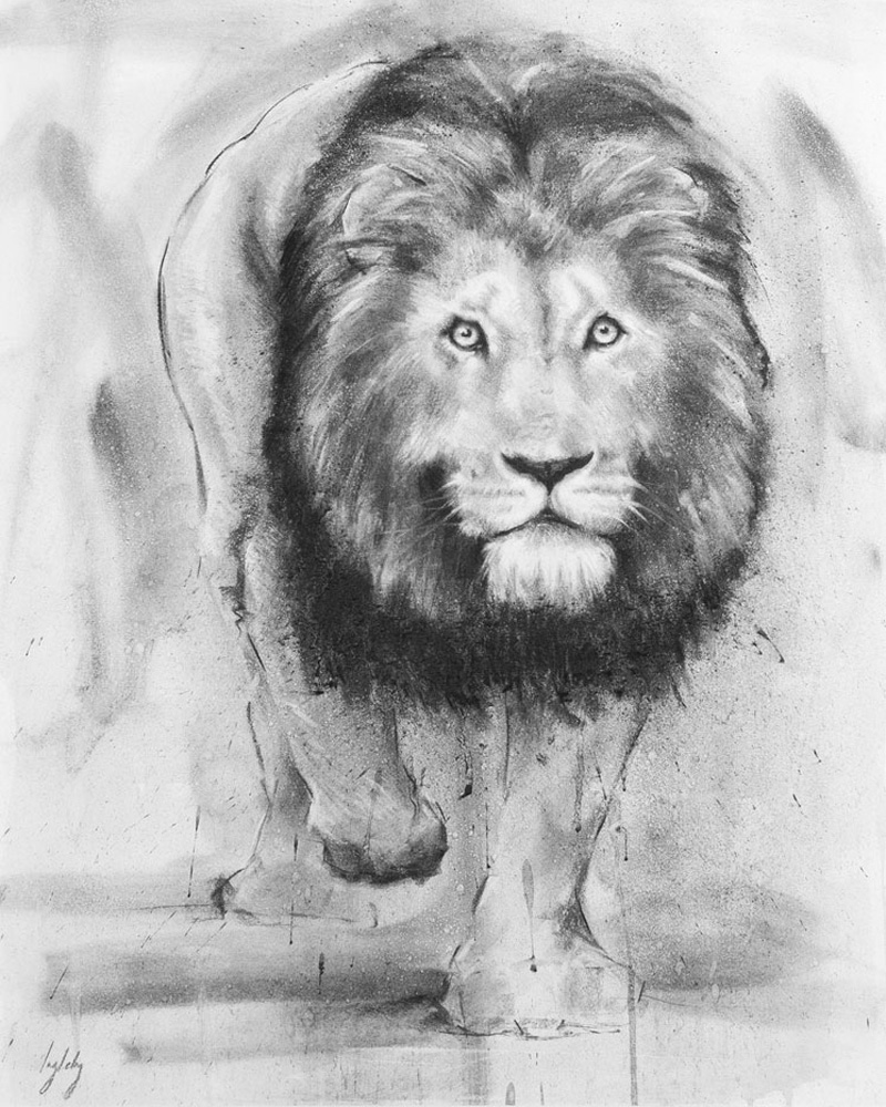 art print wildlife lion contemporary drawing