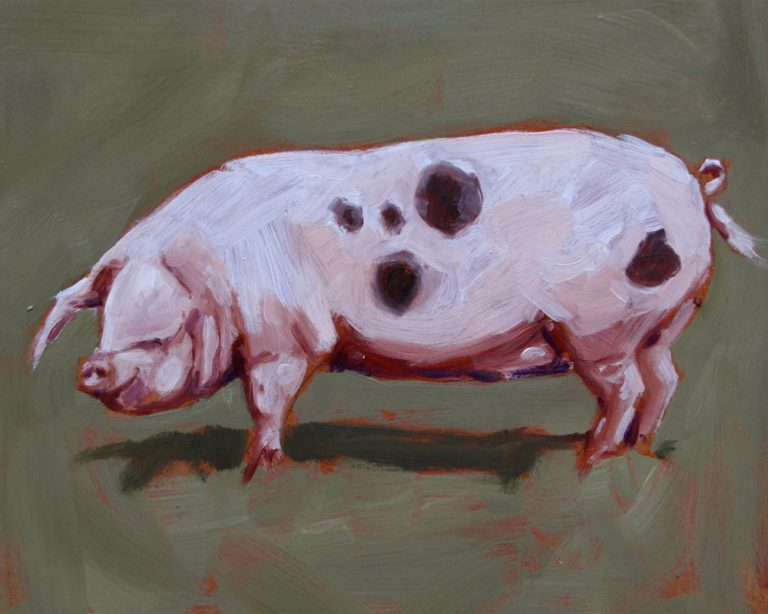 art print wildlife  pig contemporary art painting