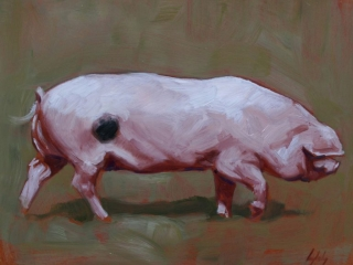 art print pig contemporary art painting